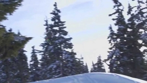 Whistler Parks Going Skiing