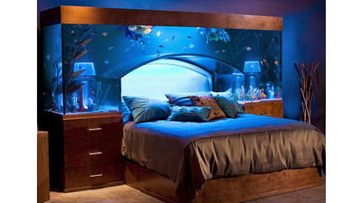 Water bed aquarium non ski gabber for Waterbed with fish