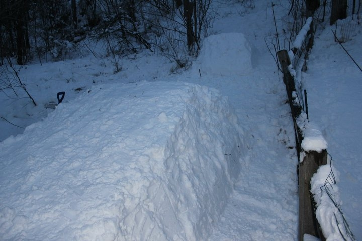 Backyard Jump - Landing
