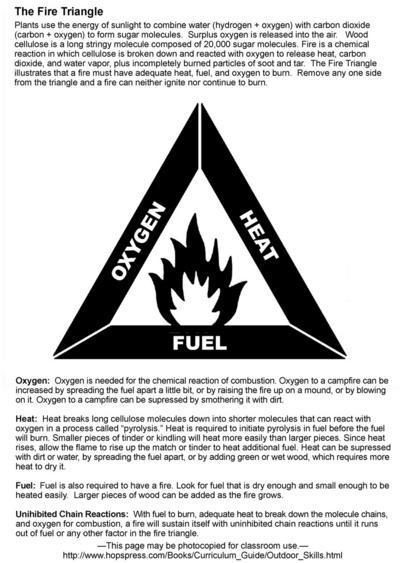 the triangle fire essay